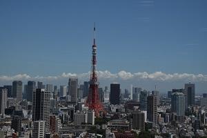 Информация за Токио