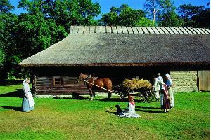 Естонски музей на открито